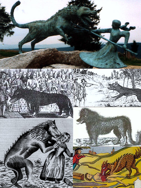 Several traditional depictions of the Beast of Gevaudan show the wide variety of physical characteristics that were attributed to this monster.