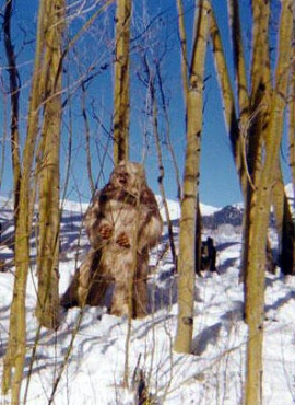The title monster from the 1977 TV film 'Snowbeast' which is a 'yeti' movie set in Colorado, even though the yeti is a creature of Asia. North America would be Bigfoot country instead of yeti country. Such confusion is common, especially in fiction. This screenshot is copyrighted by those who own the copyright to the film.