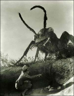 The 1954 b-movie 'Them!' is one of the most famous giant animal movies, about giant ants. This screenshot is copyrighted by those who own the copyright to the film.